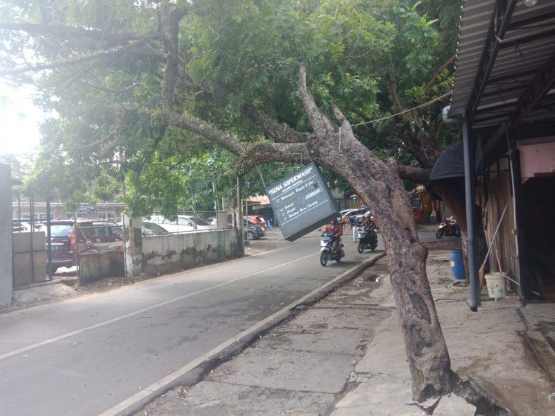 Antisipasi Jatuhnya Korban, Danramil Klojen Minta Pohon Ditebang