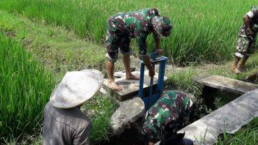 Babinsa Koramil 0833/04 Sukun Perbaiki Saluran Irigasi di Kelurahan Kebonsari