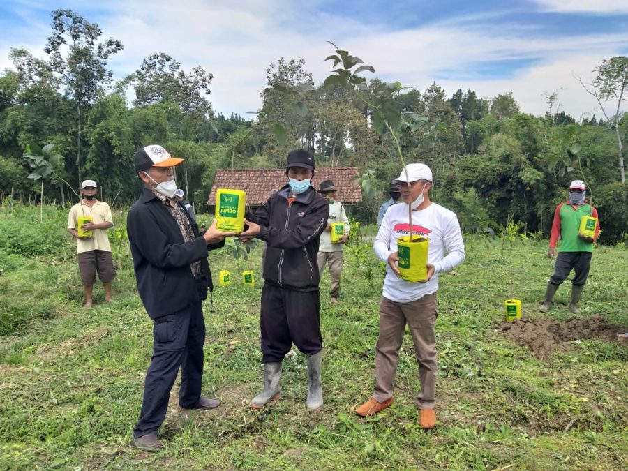 Volunteer LBH Malang Beri Ratusan Bibit Alpukat Impor